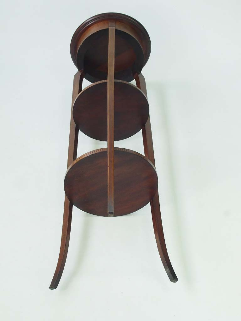 Tall Antique Edwardian Mahogany Plant Stand